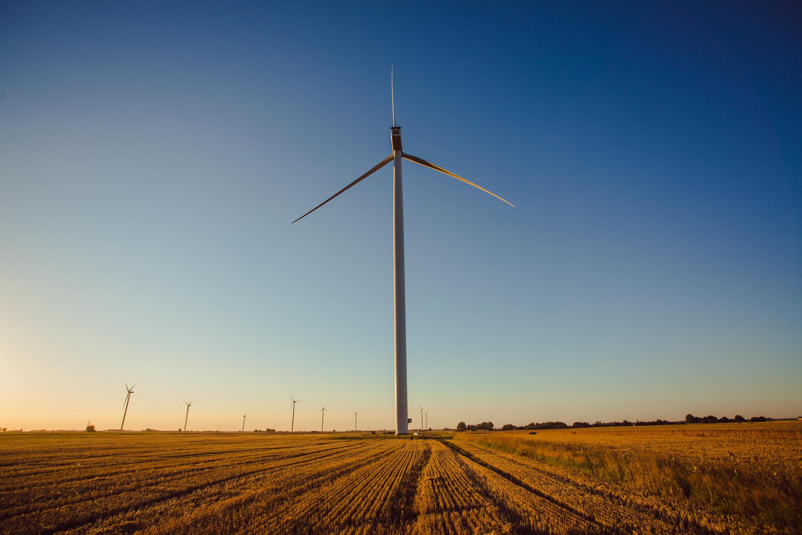 Antiglobalistai: apie romantišką kovą su vėjo malūnais