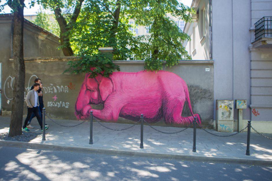 Garsiame Kauno kieme apgyvendintas rožinis dramblys   kl lt