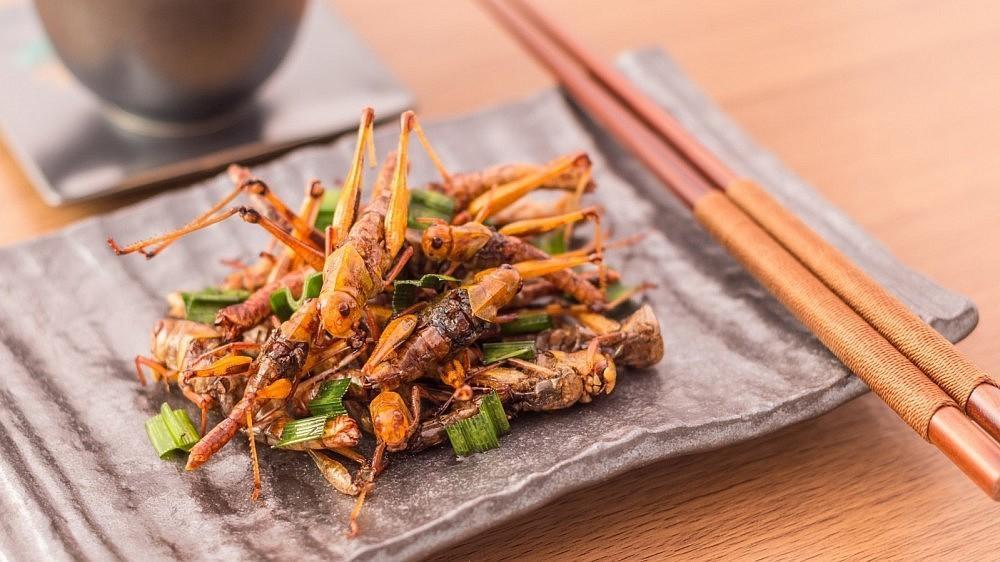 vabzdžiai valgo varpą
