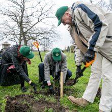 Miškų urėdijų reforma – svarbiausi faktai