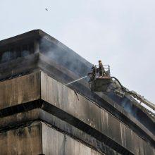 Gamtos istorijos muziejų nuniokojęs gaisras sunaikino neįkainojamas kolekcijas