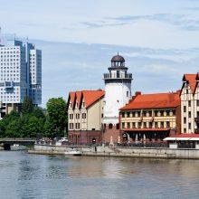 Karaliaučiaus lietuviai – prieš dvigubos pilietybės referendumą, už Lietuvio pasą