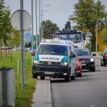 Per žingsnį nuo tragedijos: po Klaipėdos miestą klaidžiojo briedis