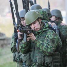 Nesitraukia: kariai savanoriai turi rinktis tarp tarnybos ir politikos