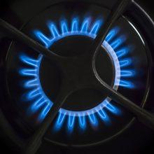 Lenkija pasirašė Danijos gamtinių dujų importo sutartį