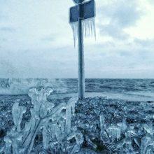 Neringą papuošė pati gamta: atsėlinęs šaltis sukūrė ledo skulptūras