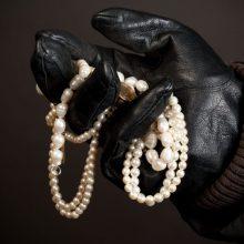 Kretingos rajone vagys nepasikuklino: iš namų išnešė juvelyrinius dirbinius