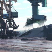 Krizė Klaipėdos uosto tarsi neveikia: krovos rezultatai toliau auga