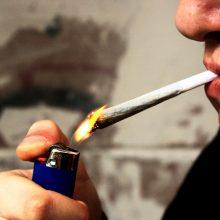 Alytuje – šeši nepilnamečiai, sulaikyti su narkotikais
