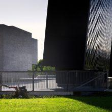Prie Nacionalinės dailės galerijos dygsta nauja instaliacija – artėjančios vasaros parodos pranašas