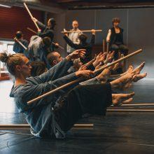 """Spektaklis """"Mikado"""": kai šokis sutinka kovos meną"""