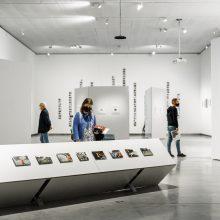 """MO muziejuje atidaroma fotografijos paroda """"Permainų šventė"""""""
