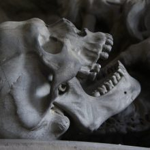 Birštono savivaldybėje – šiurpus radinys: vykdant kasimo darbus, aptikta kaukolė ir kaulai