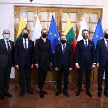 A. Bilotaitė: Lietuva ir Lenkija sieks greitesnių migracijos politikos pokyčių ES