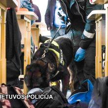Pareigūnai su šunimis tikrino, ką mokiniai nešasi į mokyklą – rado narkotikų