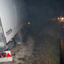 Kraupi avarija: BMW susidūrė su vilkikais, žuvo du žmonės, sužaloti vaikai