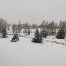Gegužę dalyje Lietuvos – baltas peizažas: pridrėbė sniego kaip žiemą