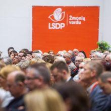 Aptirpo partijų gretos, didžiausia partija – socialdemokratų