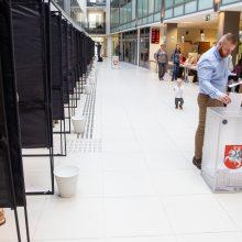 Išankstinis balsavimas: antrajame ture rinkėjai balsuoja aktyviau