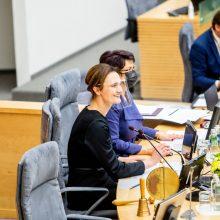 Seimo prioritetų sąraše – ir strateginė partnerystė su Baltijos šalimis