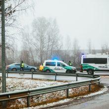 Vilkaviškio rajone pienvežis trenkėsi į medį: vairuotojas žuvo