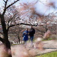 Orai: po žiemiškų pavasario išdaigų dienos ims šiltėti