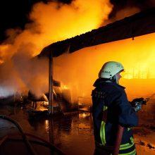 Molėtų rajone sudegė sandėliai su šimtais šieno rulonų