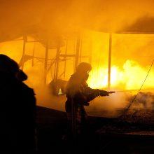 Kaune siaučia padegėjai: liepsnojo malkinė, apdegė ir namo siena