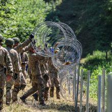 V. Sinkevičius: įvedus nepaprastąją padėtį, sieną saugotų kariuomenė