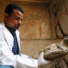 Egipto kapavietėje tarp kitų įdomybių rasta mumifikuotų pelių