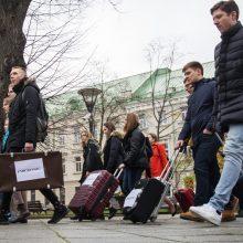 Statistika džiugina: į Lietuvą sugrįžo daugiau piliečių, negu emigravo