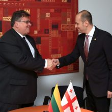 L. Linkevičius: ES turi vykdyti įsipareigojimus Rytų partnerėms dėl vizų