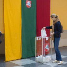 """Du """"valstiečiai"""" siūlo steigti Seimo rinkimų apygardas užsienyje"""