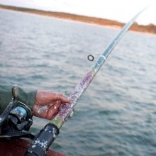 Žvejų kalendorius: šiemet balandžio 20 d. jau galima žvejoti lydekas