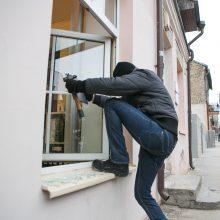 Vagys iš vilniečio namo išnešė turto už 45 tūkst. eurų