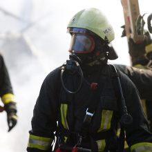 Trakų rajone sudegė medinis namas, žuvo žmogus