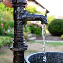 Dėl sausros susidarė neįprasta padėtis – žmonių prašo taupyti vandenį