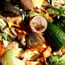Maisto atliekų rūšiavimas: įprotis, kurį teks prisijaukinti