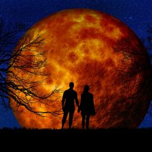 Dienos horoskopas 12 zodiako ženklų <span style=color:red;>(gegužės 14 d.)</span>