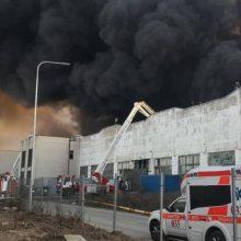 Seimas aiškinsis gaisro Alytuje padarinius žmonių sveikatai