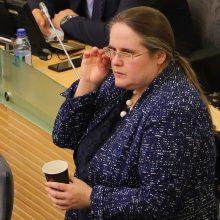 Seimas pritarė A. Širinskienės siūlymams dėl pokyčių VAD