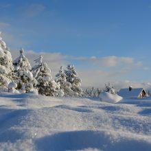 Savaitės orai: artinasi gausus sniegas, kils pūgos, šaltis nesitrauks