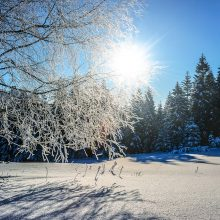 Orai: nesušalot – šiąnakt vietomis šaltis spustelėjo net iki 27 laipsnių