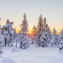 Orai: į Lietuvą plūstelėjusi šiluma naikins baltą žiemos peizažą