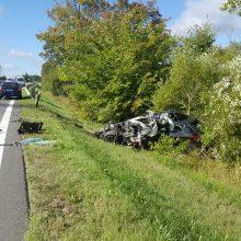 Tragiška avarija Trakų rajone: žuvo lengvojo automobilio vairuotojas