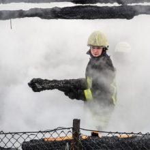 Rietavo seniūnijoje – gaisras kartono įmonėje