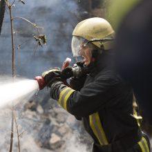 Birštone sudegė tapytojo N. Silvanavičiaus vila