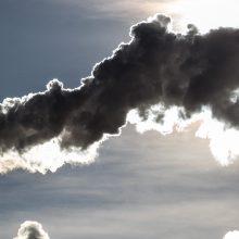 Stringa siūlymas jau nuo lapkričio reikalauti įmonių neteršti aplinkos