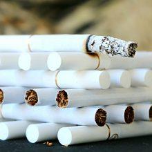 Sustabdytame automobilyje – 5 tūkstančių pakelių rūkalų kontrabanda