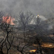 Graikų ugniagesiai ir pareigūnai perspėja dėl miško gaisro grėsmės gyvenvietėms prie Atėnų